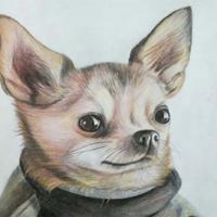 北京动漫绘画培训